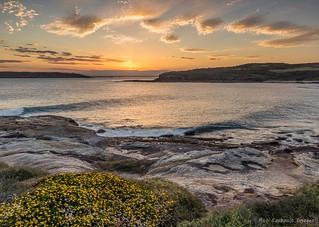 Cape Banks Sunset