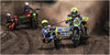 FIM Sidecar Motocross World Championship 2017 Lommel. DSC_5257 (leonhucorne) Tags: fim sidecar cross moto motocross nikon d500 sidecross