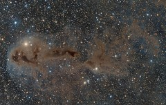 LDN 1251/1247 Area in Cephus (Paddy Gilliland @ Image The Universe) Tags: ldn1251 ldn1247 ldn nebula ngc ic space nebulae stars night astro astronomy astrophoto astrophotography ap lrgb rgb hubble cosmos texture abstract outdoor wide widefield nighttime sky dark colours astrometrydotnet:id=nova2336598 astrometrydotnet:status=solved