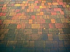 Abstract Blocks (bimbler2009) Tags: olympustg4 brisks paving water pubble colour abstract blocks brighton
