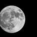 Moon - 100% - Lune