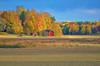 Autumn impression (RdeUppsala) Tags: uppland uppsala landscape landskap forest bosque skog sverige suecia sweden árboles trees träd ricardofeinstein naturaleza nature natur colores colors färger höst otoño autumn höstfärger paisaje outdoor