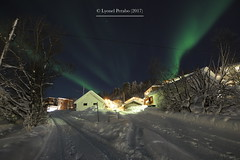 Northern_Lights_05_12_2017_II (LyonelPerabo) Tags: norge north norway northern northnorway nordic northernlight northernlights nord norwegian nordnorge december winter 2017 christmas snow ice aurora auroraborealis green blue sky light lights tree trees wood wooden woods house houses city town citylights citycenter urban arctic polar borealis landscape skies night nighttime evening street