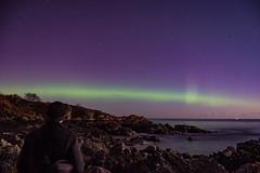 Aurora at Orlock Point (7th Nov 2017)  [Explore] (Eskling) Tags: aurora borealis green arc rays northern lights night sky stars sea ireland rocks orlock co down north
