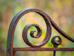 Rusty Iron Gate (roseysnapper) Tags: lauristoncastle olympusmzuikodigitaled75300mmf4867ii olympusomdem10ii autumn edinburgh fall scotland abstract bokeh colour corrosion gate iron rust