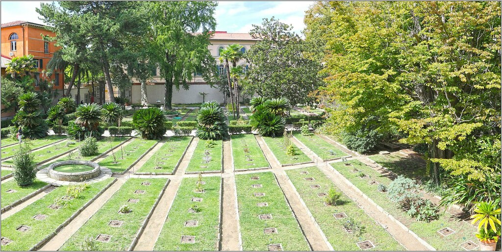 thesis and botany and trentham Planning and preparing a thesis and department of botany institute of basic science bundelkhand department of botany institute of basic science bundelkhand university.