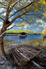 peaceful pleasure... (sirman88) Tags: azmanrahman d90 f8 mystical sandy beach defence platform village wood jetty pantaitoknenek boat waiting relax sun two daylight hidden beauty dream kt kuala path resting calmness kelantan hut pondok tree glorious under seperated interestingness infrared goldie malaysia motion panorama pointing sirman sirman88 tokina1017 traveldestinations photographyoutdoors