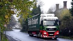 DC65 WWY (Martin's Transport Photography) Tags: man tgx truck wagon lorry vehicle freight haulage commercial transport curtainsider eddiestobart eddie stobart appleton cheshire nikon nikond7200