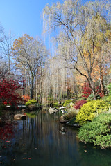 IMG_0422 (sherri_lynn) Tags: fall trees gardens gibbsgardens autumn colors pond reflections willowtrees japanesegarden landscape