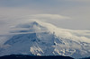 Mt. Hood (Vicki Dixon) Tags: mthood windy snow