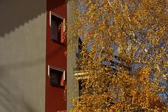 IMG_2957 (bencze82) Tags: canon eos 6d voigtländer apolanthar 90mm ősz autumn fall hungary magyarország hévízgyörk
