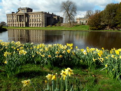 Lyme Hall, Disley 02.04.17 (dkmcr) Tags: daytrip travel landscape tourism scenery view visitbritain visitengland northernuk excursions 2017 lymehall lymepark cheshire disley lake reflection daffodil spring