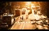 Girl on a bike, Hiroshima, 女性と自転車、広島 (Aleksi Mattsson) Tags: sunset girl bike cars car moped sign japan people lights 女性 自転車 車 広島 日本 人 日本人 人々 光 日没 nikkor200mmf2 afsnikkor200mmf2g d700 woman f2g backlight 木 orange 黄色 橙色 太陽 streetsign taxi バス scooter モペッド hiroshima