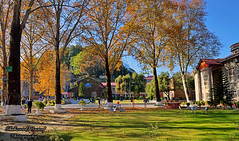 Army Burn Hall College, Abbottabad (Shehzaad Maroof Khan) Tags: abbottabad autumn fall college garden kpk pakistan british school building armyburnhall trees nature