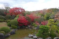 Japanese garden (pelican) Tags: dscrx10 osaka suita japanesegarden