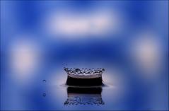 Crown Jewel (cindyz48) Tags: waterdrops splashart