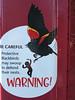 Giant blackbird peril (Ruth and Dave) Tags: sign warning danger stickfigure stickman stickfigureinperil scienceworld vancouver bird blackbird giant swooping defending attacking