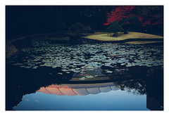 小石川後楽園 / Koishikawa Korakuen Gardens (aoishikaku) Tags: g7x 東京 tokyo 文京区 bunkyo 小石川後楽園 東京ドーム 紅葉 garden