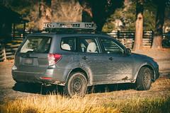 2012 Subaru Forester (donaldgruener) Tags: sh forester subaru subaruforester offroad muddy