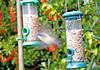27/11/17 (Luzon Jim) Tags: midflight birds nikon nature watermark outdoor motion bluetit wildlife feeder greenery garden pole rspb
