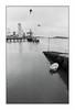 Lorient, zone portuaire (Punkrocker*) Tags: nikon f2 sb nikkor 24mm 2428 ais wide film ilford pan 400 nb bwfp port harbor bird seagull boat lorient keroman kergroise bretagne brittany morbihan travel