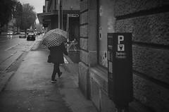 happy umbrella (gato-gato-gato) Tags: 35mm ch delta3200 iso1000 ilford ls600 nikon noritsu noritsuls600 schweiz strasse street streetphotographer streetphotography streettogs suisse svizzera switzerland zoom300 zueri zuerich zurigo z¸rich analog analogphotography believeinfilm film filmisnotdead filmphotography flickr gatogatogato gatogatogatoch homedeveloped pointandshoot streetphoto streetpic tobiasgaulkech wwwgatogatogatoch zürich black white schwarz weiss bw blanco negro monochrom monochrome blanc noir strase onthestreets mensch person human pedestrian fussgänger fusgänger passant sviss zwitserland isviçre zurich