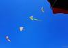 Aquiloni (scardeoni_fabrizio) Tags: aquiloni mare cielo ombrellone carta vento