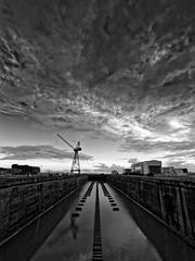 Ligne de tins (3quilibre) Tags: nikon d750 1424f28 nb noir blanc bw black white noiretblanc eau water ciel sky nuage cloud ligne