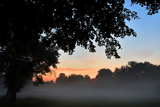 Footsteps in the mist at sunrise  -  (Selected by GETTY IMAGES)