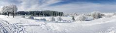 Magie de l'hiver - Part II (Fred&rique) Tags: lumixfz1000 photoshop raw doubs tourbières frasne franchecomté froid neige étang paysage nature gel bleu blanc ciel