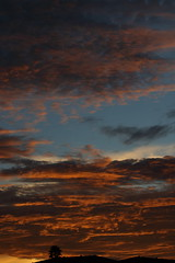 Sunset 11 13 17 #06 (Az Skies Photography) Tags: sunset sun set dusk twilight nightfall cloud clouds nogales arizona az nogalesaz red orange yellow gold golden salmon black skyline skyscape sky arizonasky arizonaskyline arizonaskyscape arizonasunset november 13 2017 november132017 111317 11132017