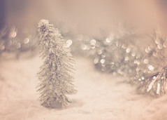 It is the Season to Sparkle! (Fire Fighter's Wife) Tags: christmas christmaslights sparkle shine shiny bokeh bokehlicious christmastree trees tree december decorations snow snowy white nikon nikond750 pentacon1850mm pentacon vintage vintagestilllife vintagefeelings vintageprocessing vintagelens tinsel 25daysofchristmas homesweethome stilllife tabletop tabletopstilllife preparations softcolors softhues soft softlight softhaze haze hazy faded fadedcolors fadedhues muted mutedcolors mutedhues mutedshadows