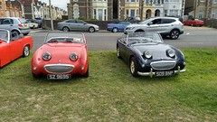 Austin Healey Sprite SZ9695 and 509BNP (Andrew 2.8i) Tags: classic car classics cars autos westonsupermare motorfest show shows british sports sportscar open roadster cabriolet convertible frogeye bmc austin healey eye frog sprite austinhealey bugeye