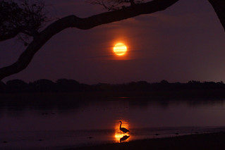Super Moon over Lake Shelby