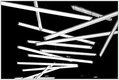 Néons, Stedelijk Museum, 's-Hertogenbosch, Brabant-Septentrional, Pays-Bas (claude lina) Tags: claudelina canon paysbas hollande holland nederland brabantseptentrional shertogenbosch boisleduc musée museum stedelijkmuseum stedelijkmuseumshertogenbosch néons