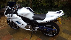 suzuki sv650s 2013 (Rickster G) Tags: vtwin tourer motorcycle sports 650 2013 sv suzuki twinsuper twingsxrtlr100suzuki tlsuzuki tlr tl1000r vee veetwin suzukitl1000r suzukitlr gsxr tlr1000 1000 2002 classic collectible custom images image photographs photograph photo photos picture pictures supertwin twin
