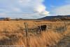 Owens Valley-142 (Denise Noelle Photography) Tags: owensriver bishopca sierranevadamountains monolake lonepine junelake mammothlakes