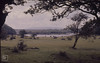 Lough Coole through trees. Burren (Mary Gillham Archive Project) Tags: 17527 burren countyclare ireland landscape