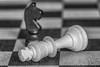 Surrender (JnHkstr) Tags: schaken chess zwartwit macro 105 nikon 105macro d500 blackandwhite check mate checkmate king knight pawn koning paard pion schaakmat schaak