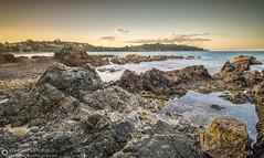 Oneroa Beach, Waiheke Island, Auckland, New Zealand