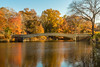 Thanksgiving Day in Central Park (Jill Clardy) Tags: nyc newyorkcity thanksgivingday travel trip vacation 201711234b4a6367hdr thanksgiving day central park autumn fall bow bridge pond water reflections tree gold orange yellow red leafpeeping colors lake thelake bowbridge leaf