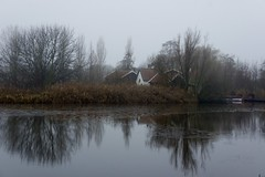DSC06121 (hofsteej) Tags: holland middendelfland zuidholland netherlands december vlaardingervaart broekpolder natuurmonumenten