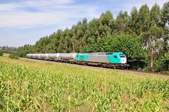 Porzomillos (REGFA251013) Tags: renfe alpha trains tren combio eruo4000 bioetanol galicia adif