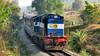 14693 ED WDG3A (TheRailzone) Tags: wdg3a roro konkan railways indian alco luxury train golden chariot