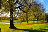 Low Sun,Westburn Park,Aberdeen_nov 17_238 (Alan Longmuir.) Tags: arteffect westburnroad westburnpark grampian aberdeen lowsun