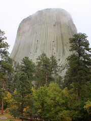 Wyoming, Devils Tower IMG_5491 (ianw1951) Tags: cenozoic columnarjointing devilstower geology phonolite usa wyoming