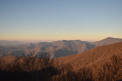 Craggy Gardens, NC. (Hollingsworth18) Tags: