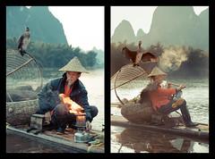 _62A3808 (gaujourfrancoise) Tags: china chine guangxi guilin yangshuo gaujour cormorantfishermen pêcheursauxcormorans traditionalfishing pêchetraditionnelle night nuit light lamparo cormorants cormorans