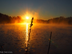 sunrise through the fog (deldevries) Tags: greenhill tennessee unitedstates us