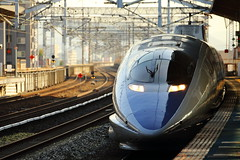 Bullet Train 500 series (Teruhide Tomori) Tags: 500series bullettrain superexpress japanrailway japon japan fukuyama hiroshima kodama 500系 こだま 福山駅 広島県 日本 新幹線 山陽新幹線 高速鉄道 列車 電車 jr西日本 train railway railroad shinkansen